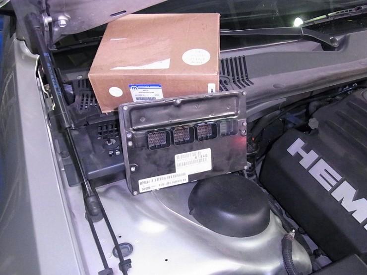 RIMG1872